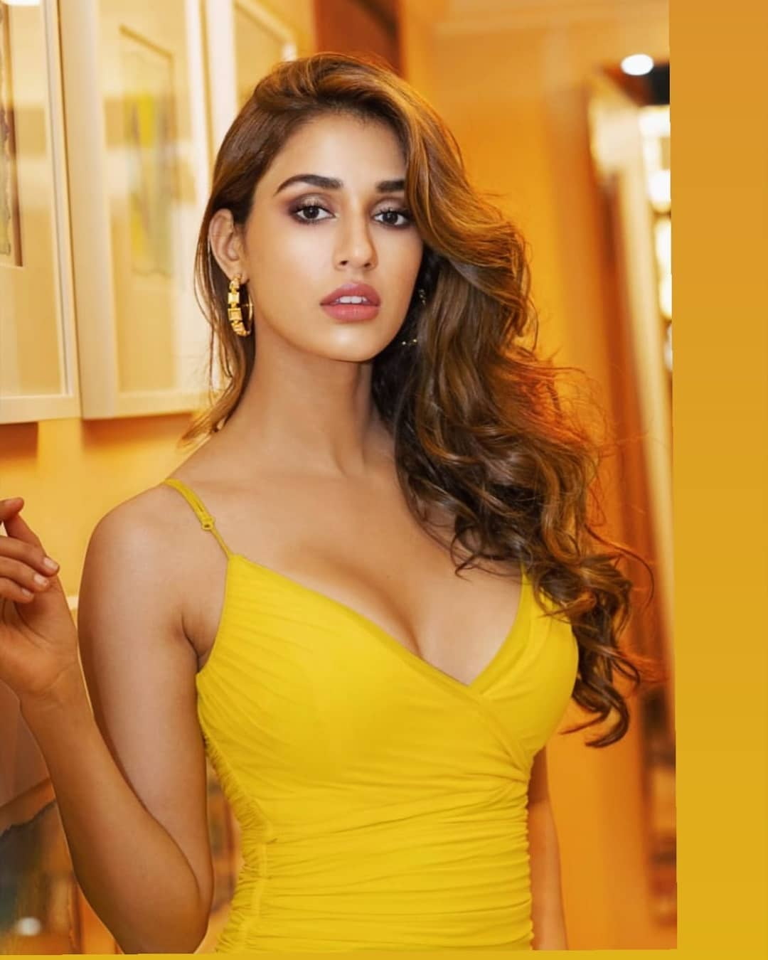 dishapatani, Bollywood