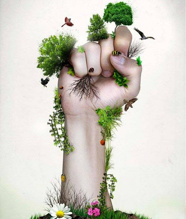WorldEnvironmentDay, ForNature, Gogreen